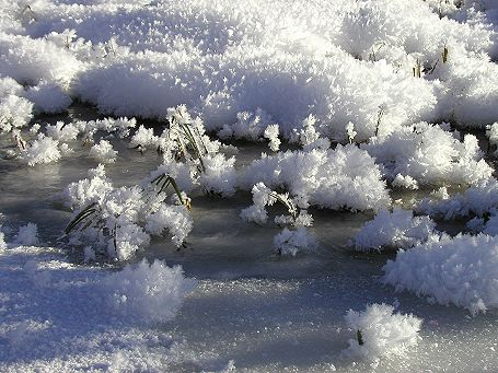 Seewaldsee Schneekristalle