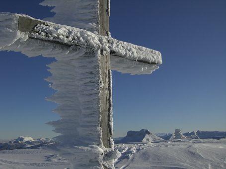 Eisbart am Gipfelkreuz des Schlenkens